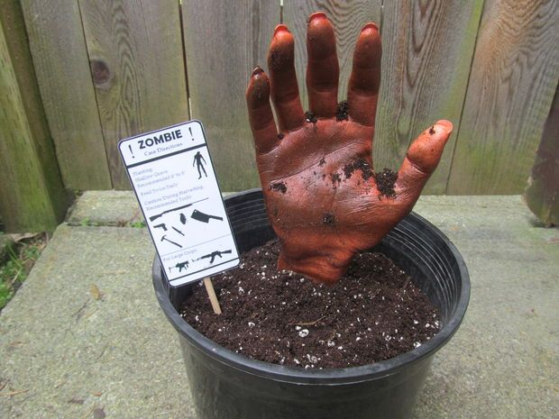 Picture of Zombie in a Pot- A Fun Prop/Decoration