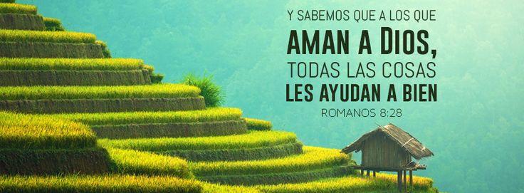 """Todas las cosas les ayudan a bien - Romanos 8:28 """"Y sabemos que a los que aman a Dios, todas las cosas les ayudan a bien, esto es, a los que conforme a su propósito son llamados."""""""