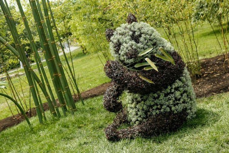 Восхитительные скульптуры из растений. Обсуждение на LiveInternet - Российский Сервис Онлайн-Дневников