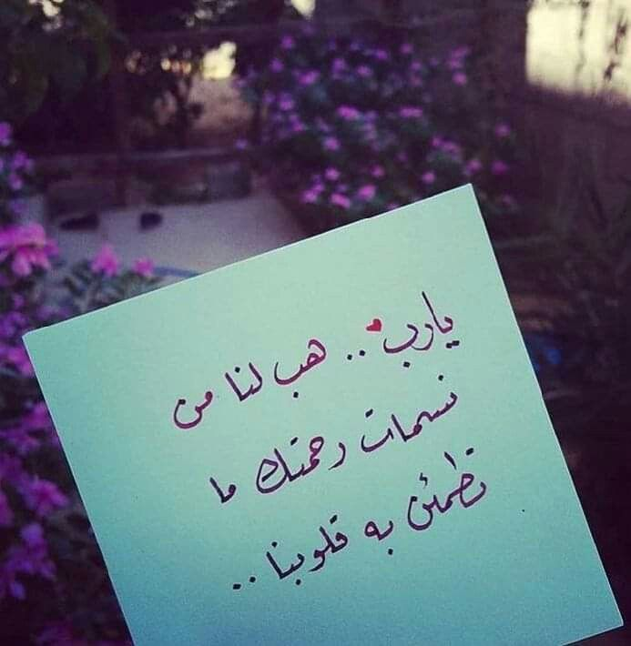 يا رب هب لنا من نسمات رحمتك ما تطمئن به قلوبنا Mood Quotes Photo Quotes Positive Notes
