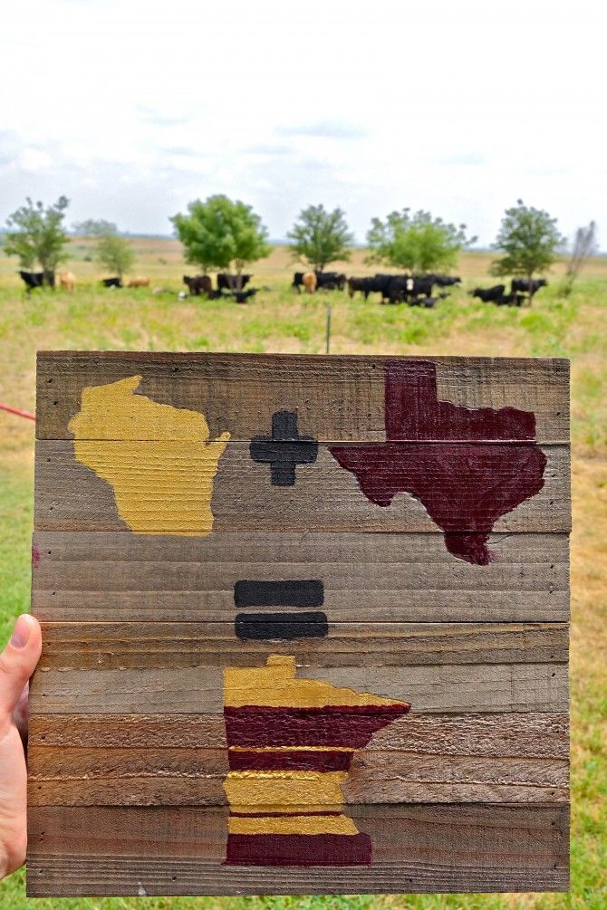 DIY College Dorm Art - Board with Roommates' State Silhouettes (Wisconsin + Texas) = The University of  the Minnesota ~