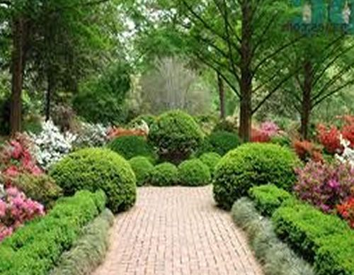 96 best images about yard landscaping on pinterest small for Sample garden landscape