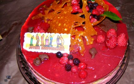 http://www.750g.com/gateau-a-la-mousse-de-fruits-rouges-r12193.htm