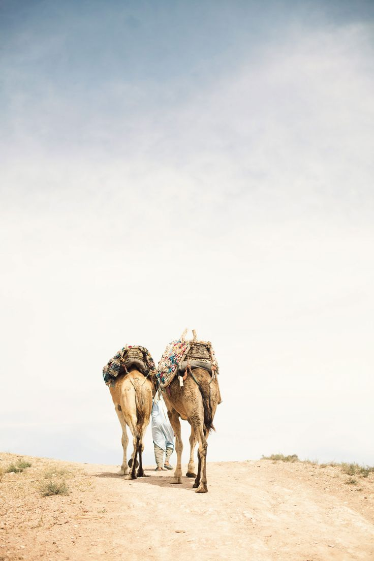 : The Roads, Adventure, Camels Africa, Morocco Beautiful, Desert Rose, Desert Oasis, Travel Food, Desert Walks, Agafay Desert