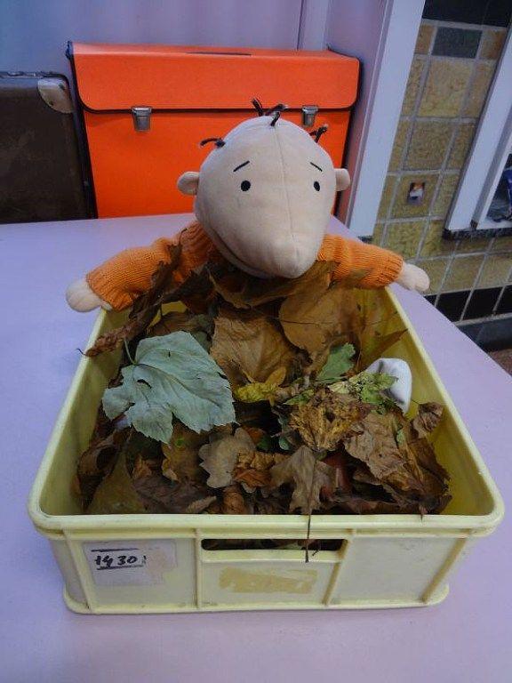 Opening thema: Jules zit verstopt onder bladeren