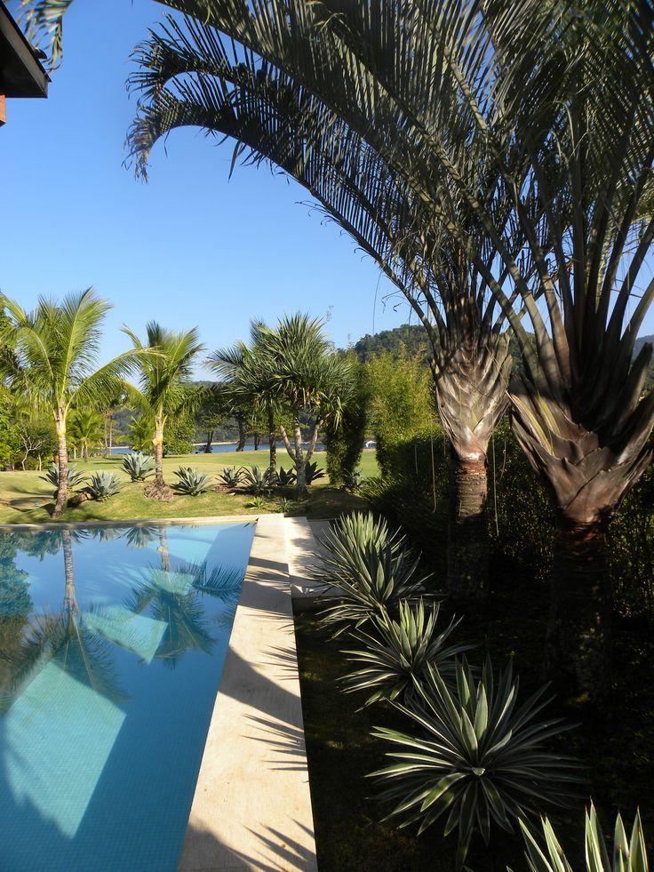 Jardim com Palmeira-triangular e agaves.