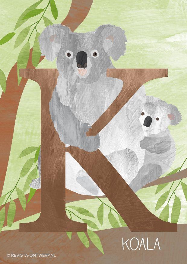 De K is van koala, het schattigste dier van Australië! Koala's eten en slapen, eten en slapen, eten en slapen… www.revista-ontwerp.nl