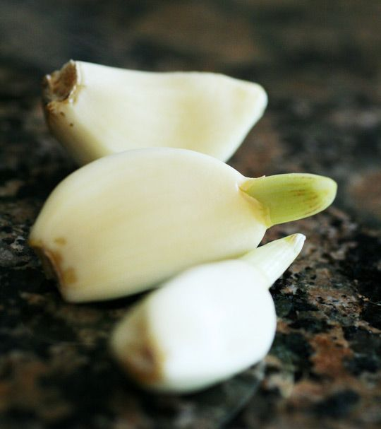 9 Foods You Can Regrow From Kitchen Scraps: 17 Best Images About Garlic On Pinterest