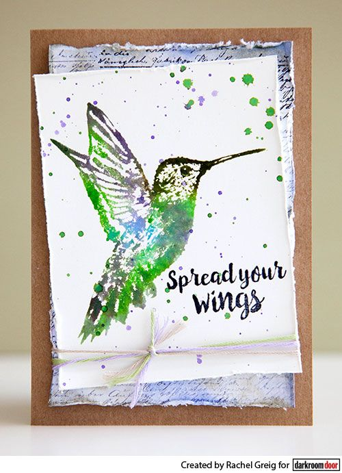Card by Rachel Greig using Darkroom Door Hummingbirds Rubber Stamp Set