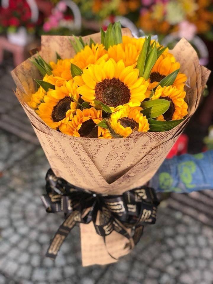 Pin De Katherine Baron Em Flower Power Ideias De Quintais Girassol