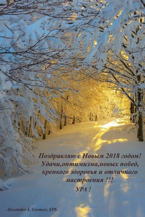С Новым 2018 годом!!! Всем здоровья, счастья, исполнения желаний, оптимизма и прекрасного настроения !!!