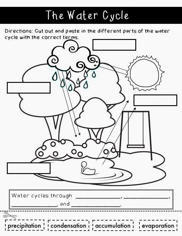 8 Best Water Cycle Images On Pinterest Teaching Science