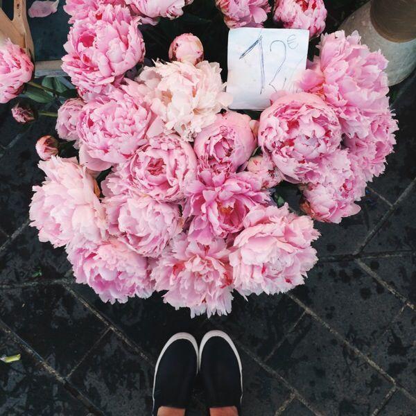 Flower Market Nice, France