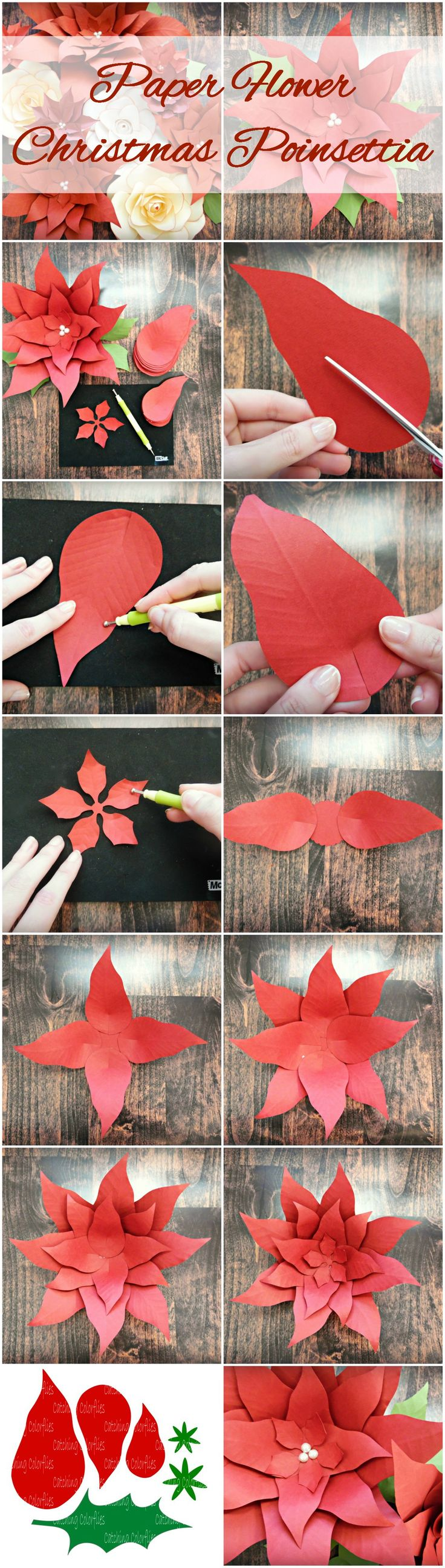 Christmas Giant Poinsettia Paper Flowers- DIY Christmas Backdrop, Flower Templates & Tutorial, SVG cut files
