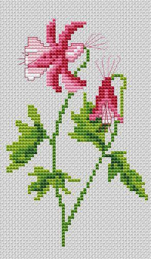Gallery.ru / Считаю её аквилегией. Автор Lydie Sachse - Цветы и прочая растительность_2/Flowers/freebies - Jozephina