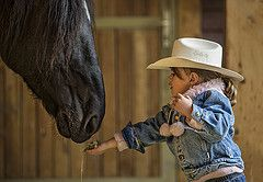 little cowgirl photography - Google Search