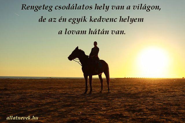 lovas idézetek képekkel Pin on Lovas idézetek magyarul