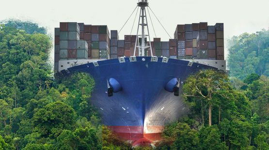 Non au Grand Canal du Nicaragua ! | Photomontage : un porte conteneurs vue de face se dirige vers nous en pulvérisant la forêt tropicale