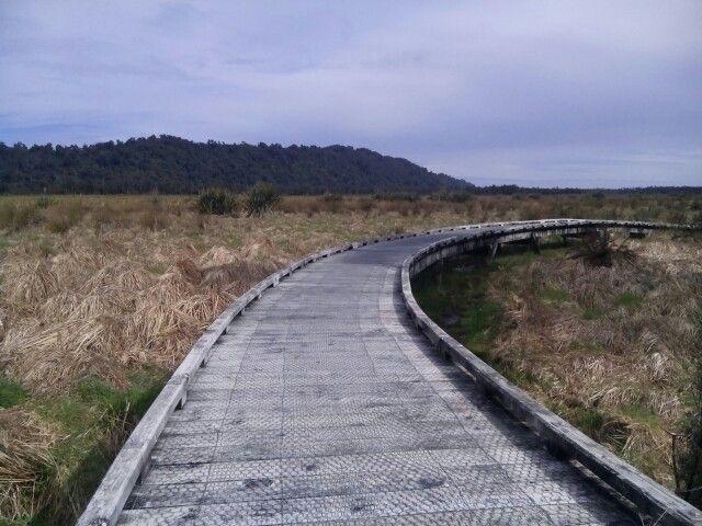 Waitangitaona Wetlands Walk.  15 mins return