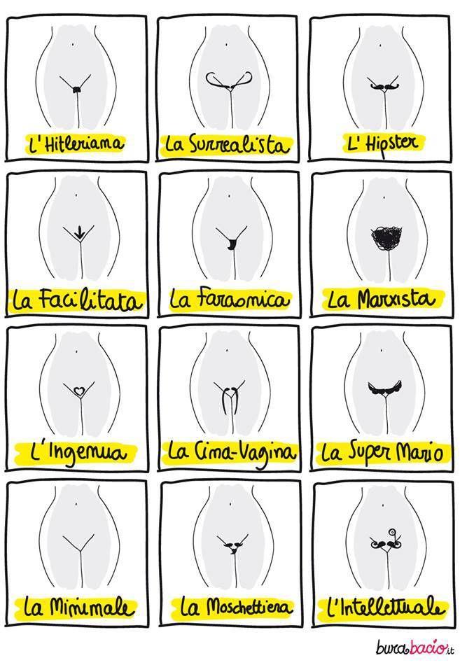La tavola sinottica della vagina: chiedila alla tua estetista.La tavola sinottica della vagina: chiedila alla tua estetista.