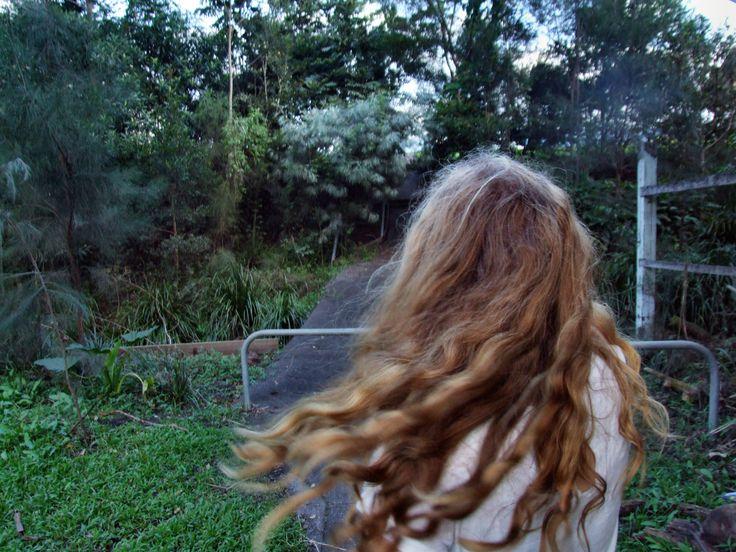 The creek- Lismore NSW