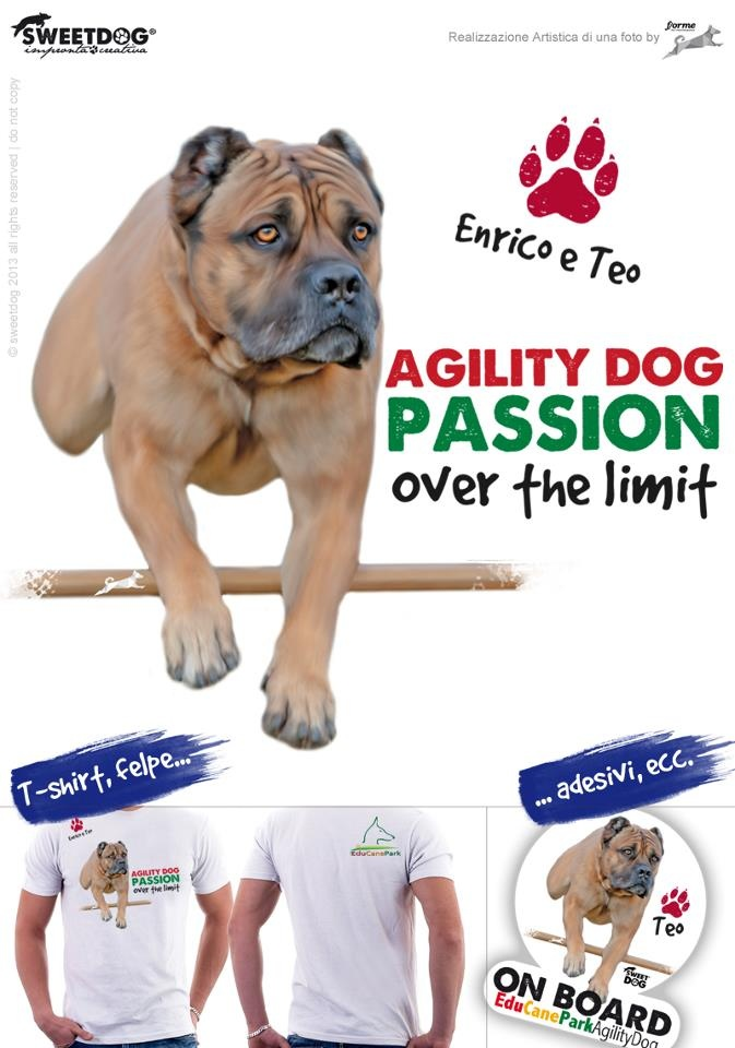 TEO (Cane Corso) - Personalized T-Shirt & Sticker
