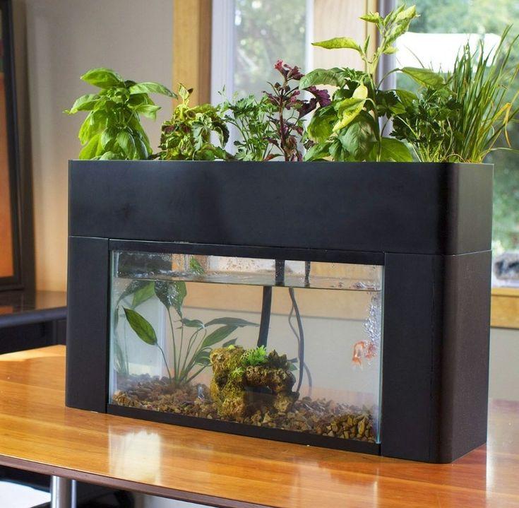 Aquasprouts Garden Gadget Pinterest Gardens