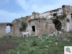 Le rovine dell'Eremo di Santagostino a San Marco in Lamis sopra Stignano