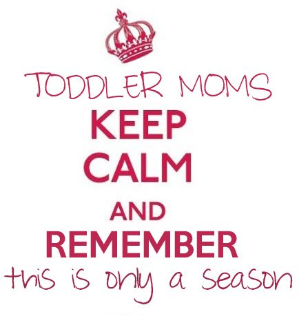 Toddler Quotes Entrancing 10 Best Toddler Quotes Images On Pinterest  Families Ha Ha And Quote