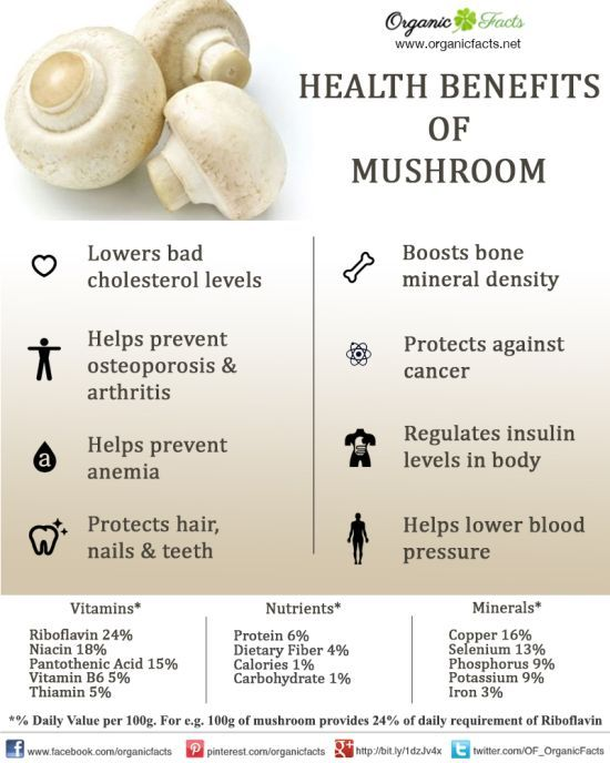 Health benefits of mushrooms include their ability to lower bad cholesterol levels (LDL) and raise good cholesterol levels (HDL), which protects heart health and reduces blood pressure.