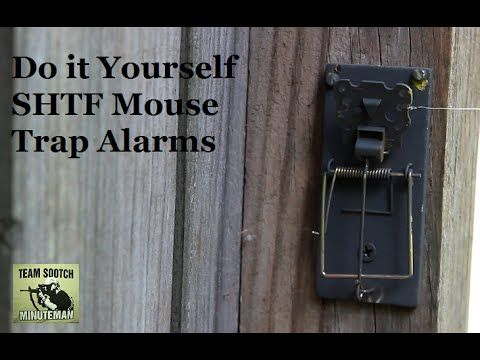 Two DIY Mouse Trap Alarms for SHTF http://rethinksurvival.com/mouse-trap-alarms-for-shtf-video/
