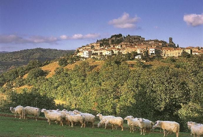 coming from Saturnia.....