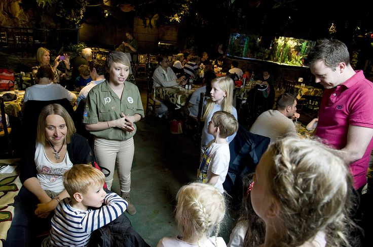 So often something just seen in a book or on Television, our unique and engaging tours give children an amazing opportunity not just to learn about the environment, but also to see it – something so many of them will never actually get to do.