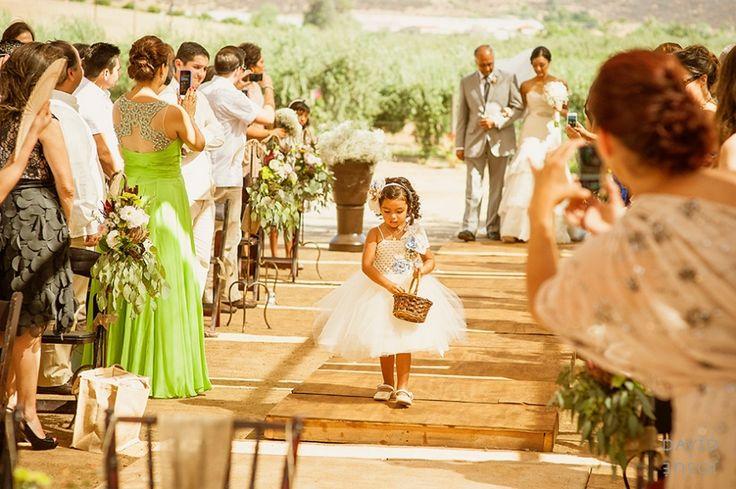 La Joya Vineyard,  - Ensenada Wedding