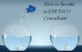 mySAPgurus provides real-time and placement focused sap fico training in Hyderabad . Our SAP financial accounting and controlling (fico) course includes basic to advanced level and our sap fico course is designed to get the placement in good MNC companies in Hyderabad as quickly as once you complete the sap fico certification training course.
