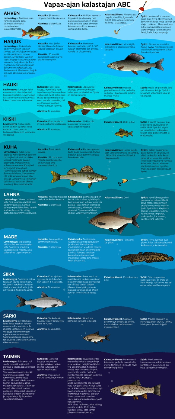 Finnish fish - 10 common species of fish - Vapaa-ajan kalastajan ABC