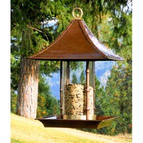Metal and Glass Asian Style Bamboo Wild Bird Feeder   This Metal and Glass Asian Style Bamboo Wild Bird Feeder brings a touch of Asia to your outdoor decor with our exclusive Bamboo Bird Feeder. A long-time garden companion, this exotic bird feeder provides a sheltered dining spot. The faux-bamboo metal pillars rise up from a tray that catches seed and hosts many birds at a time. Free Shipping.