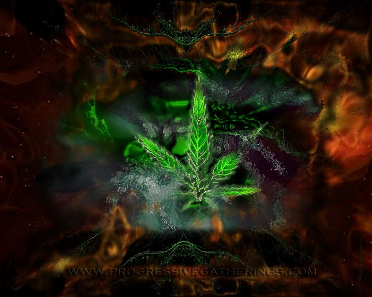 30 best 420 images on Pinterest | Smoking, Weeding and Killing weeds