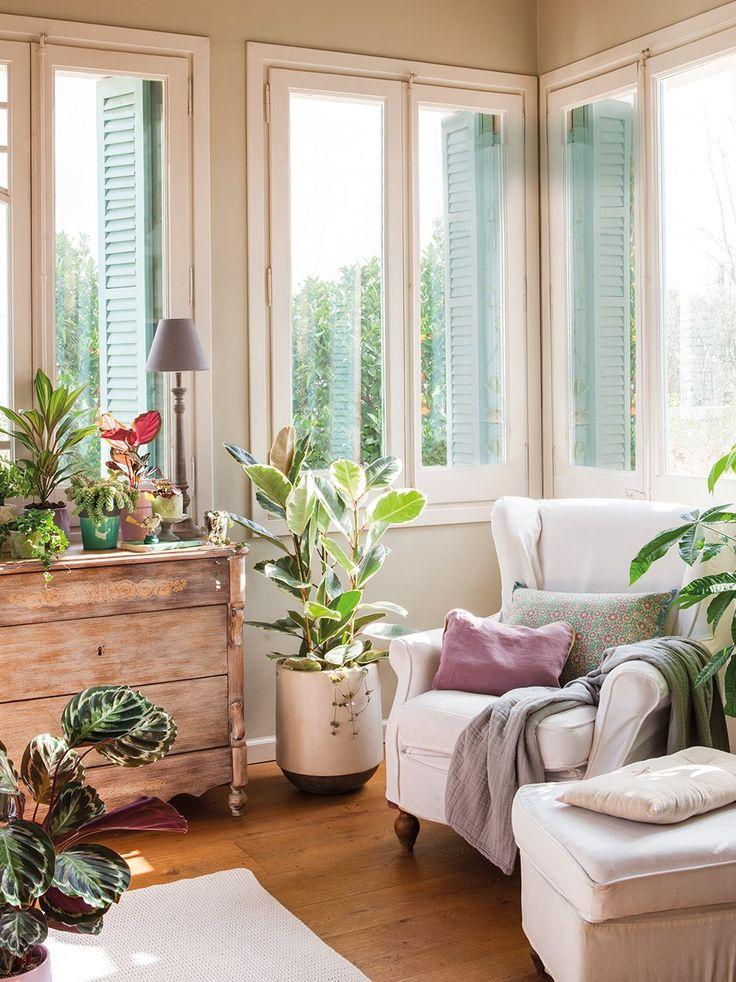 Decora con plantas y ¡gana salud y vida! · ElMueble.com · Casa sana