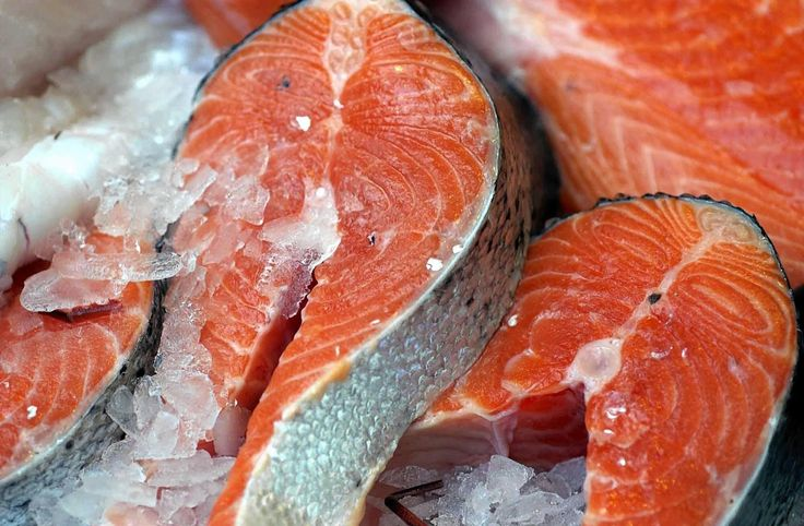 Scottish Salmon Producers' Organisation Archives | Press and Journal