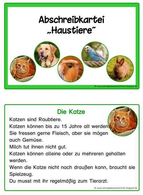 Lesekartei und Abschreibkartei zum Thema Haustiere in Druckschrift