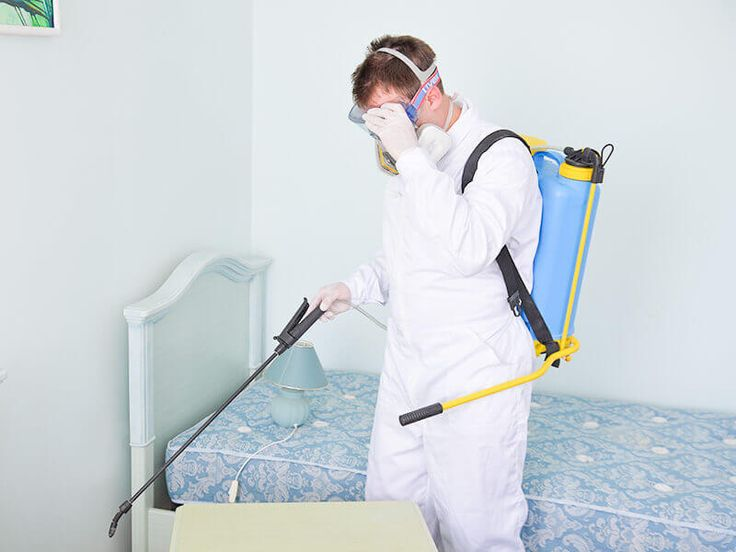 Swift-X #Pest #Control #Toronto. Fully licensed and insured cockroach exterminator providing reliable, safe and affordable #solutions. Call Us:647-478-2128