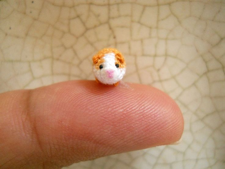 17 best images about crochet on pinterest free pattern for Free guinea pig stuff