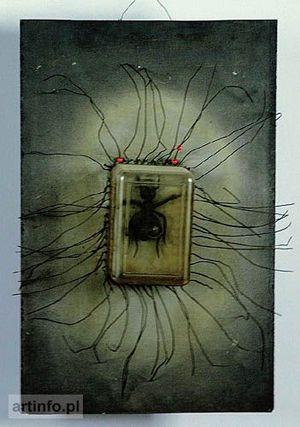Wladyslaw Hasior Pajak / Spider