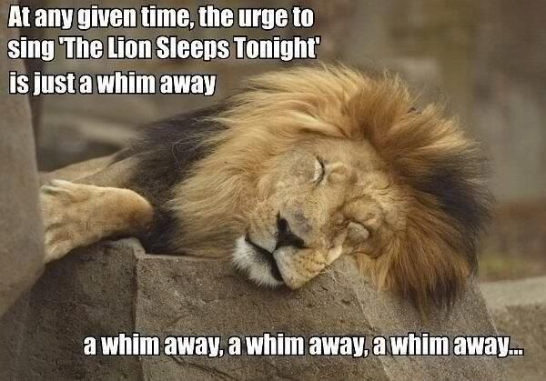 """""""In the Jungle.... The mighty Jungle... the Lion sleeps tonight... """" LMFAO DEAD!!"""
