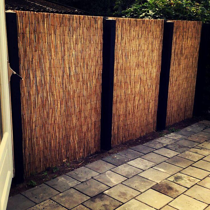 Tuin opgeknapt tegen de oude schutting riet matten geniet en de betonnen pilaren mat zwart geschilderd