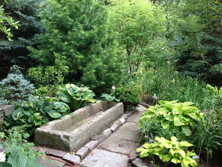 1000 Ideas About Galvanized Water Trough On Pinterest