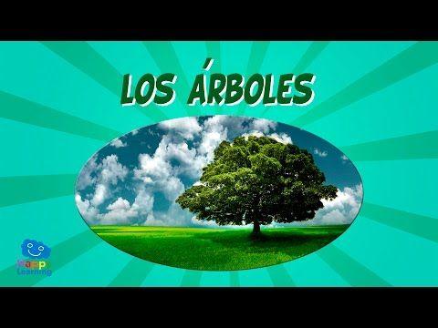 Los árboles | Videos Educativos para Niños - YouTube