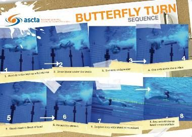 Butterfly Turn Sequence Poster $11