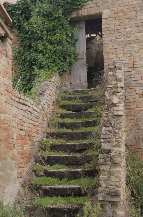 """""""Stairway Less Traveled"""" Tuscany, ItalyFavorite Places, Architecture Portraits, Green Gardens, This Stairways, Tuscany Italy"""